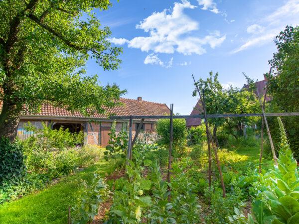 Gemüsegarten Landhof Neulingen