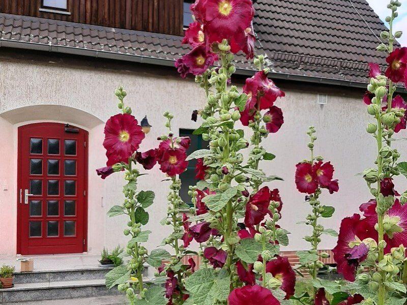 Bild von Alte Schule Jeber-Bergfrieden